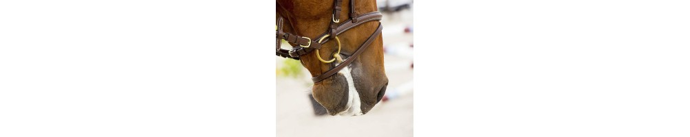 Horse Bits and Snaffles   Tuxe Life, Equestrian Shop Online