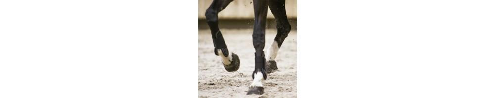 Hoof Care | Tuxe Life, Equestrian Shop Online