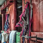 Stable Mucking
