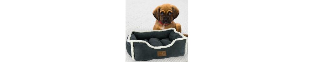 Complementos y Juguetes para Perros   Tienda Hípica Tuxe Life