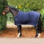 Bestsellers - Horse Rugs