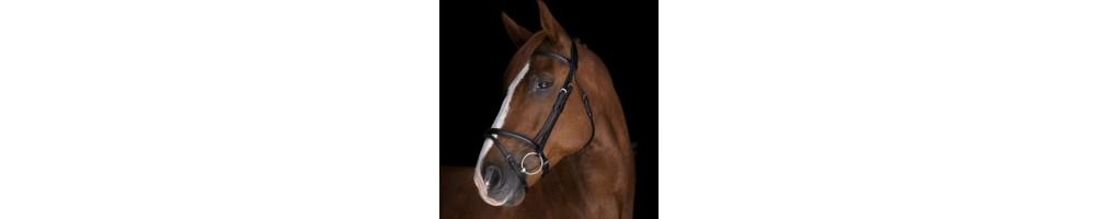 Bestsellers - Halters   Tuxe Life, Equestrian Shop Online